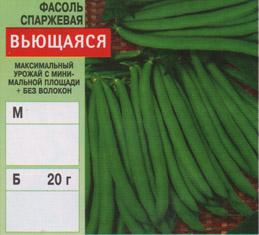 Фасоль модница выращивание 289